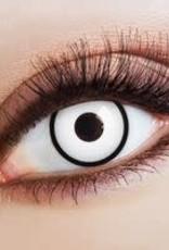 jaarlenzen the sharp eyes