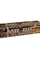 FARAM Mr BIG 93 shots