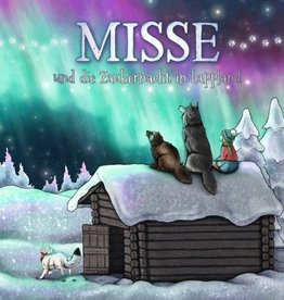 Hillcottage / MISSE and the magical night of Lapland
