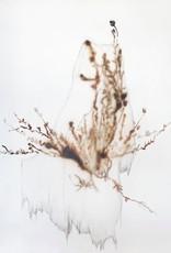"""Arenaria Norvegica"" Acrylique sur canevas"