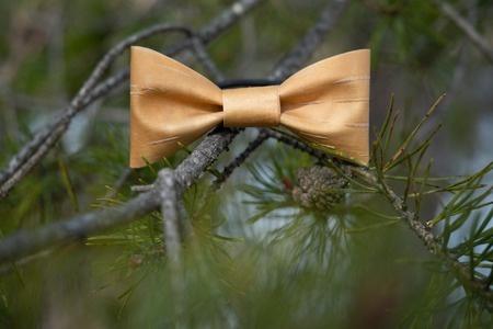 Birch bark hairbow
