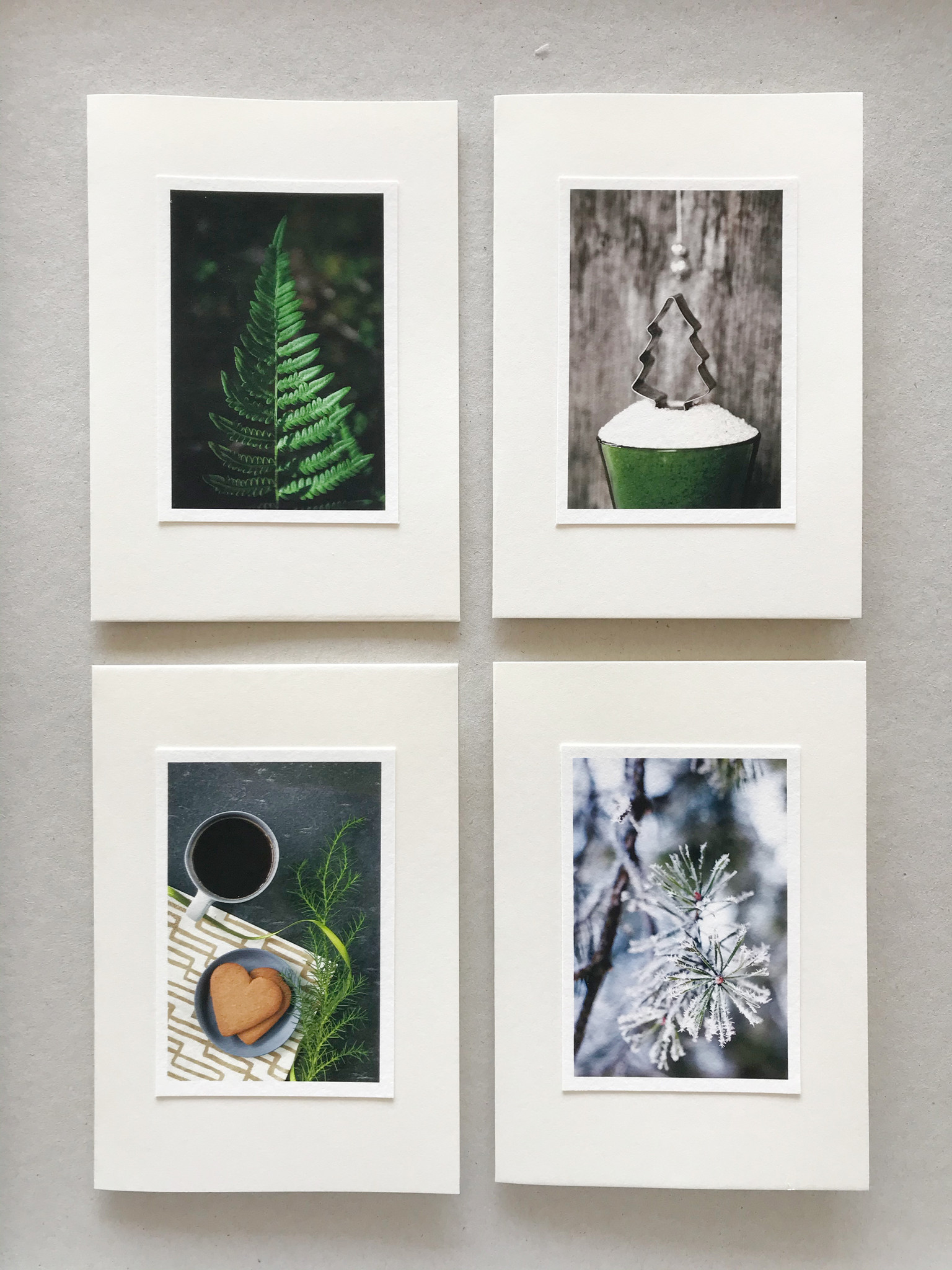 "Handmade greeting cards set of 4 ""Branch"""