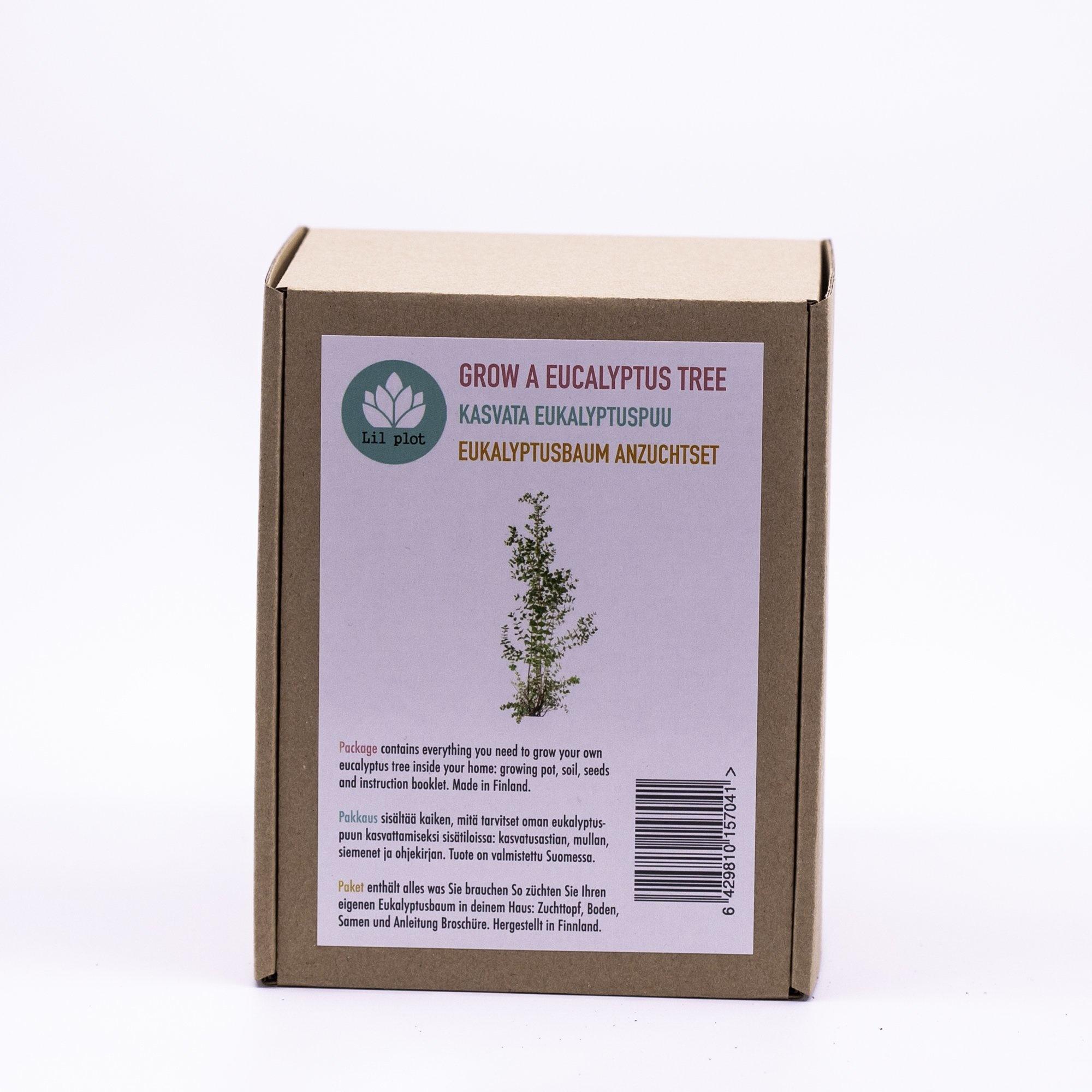 Eucalyptus Tree Growing Kit