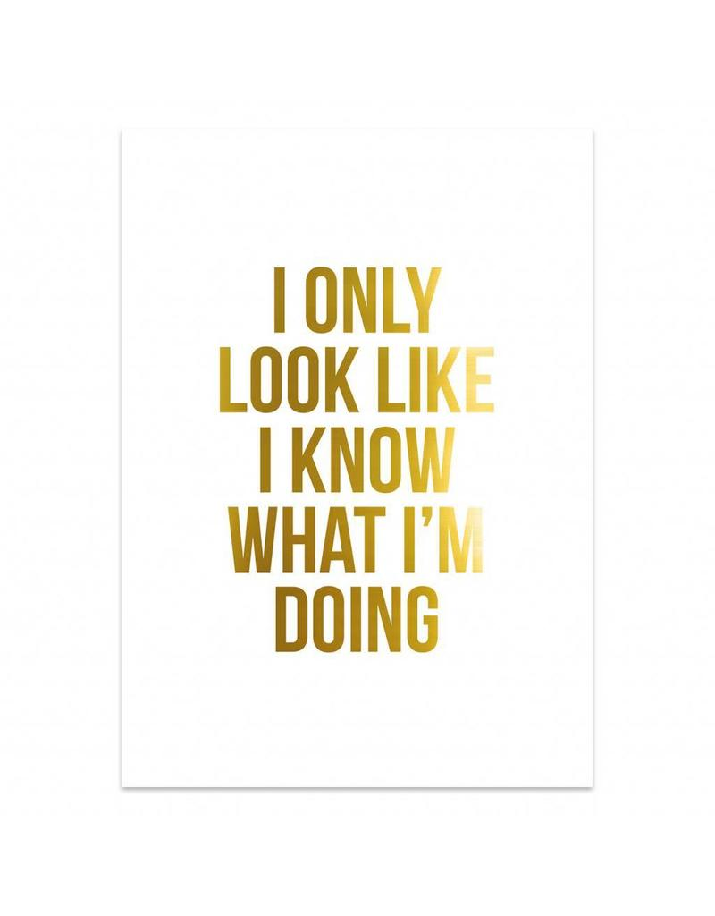 Poster 50x70 I only look like I know what I'm doing