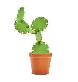 Onderzetters cactus