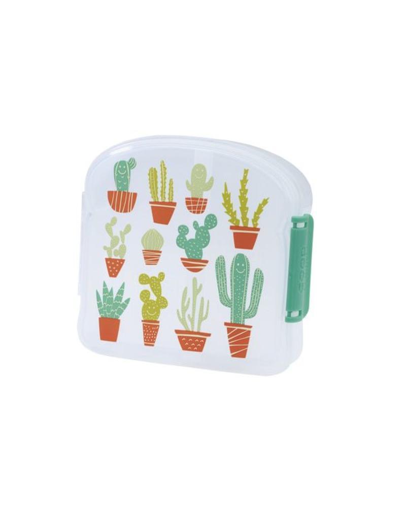 Brooddoos klein cactus