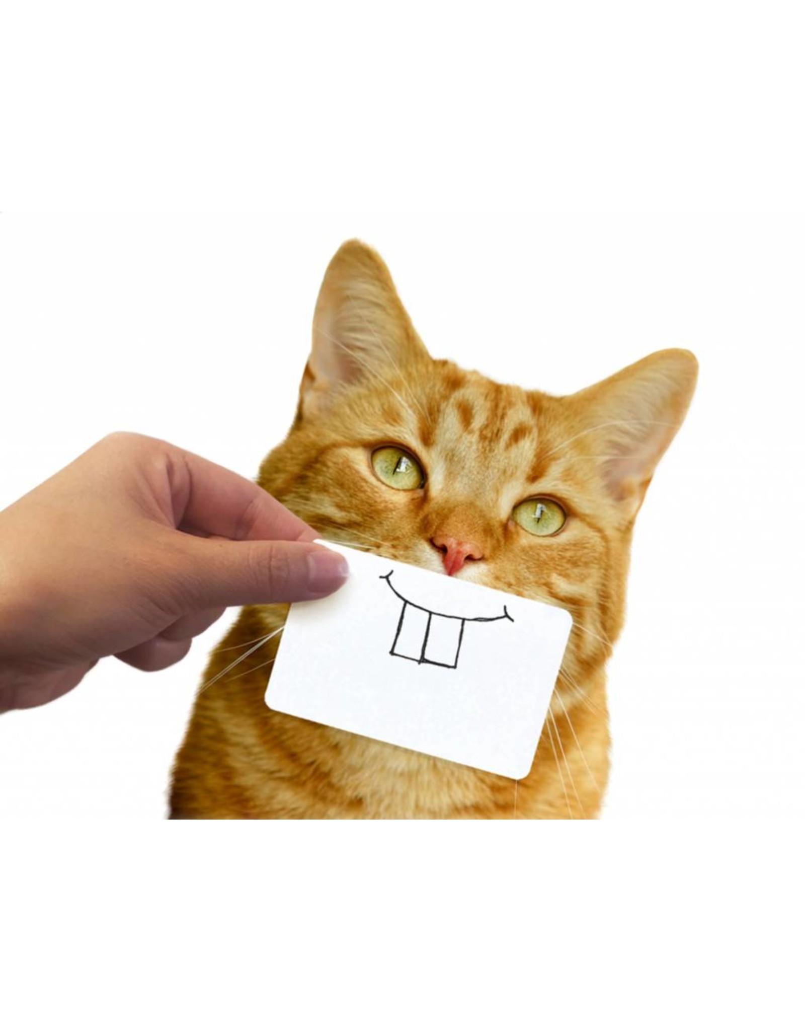 Fotokaartjes kat