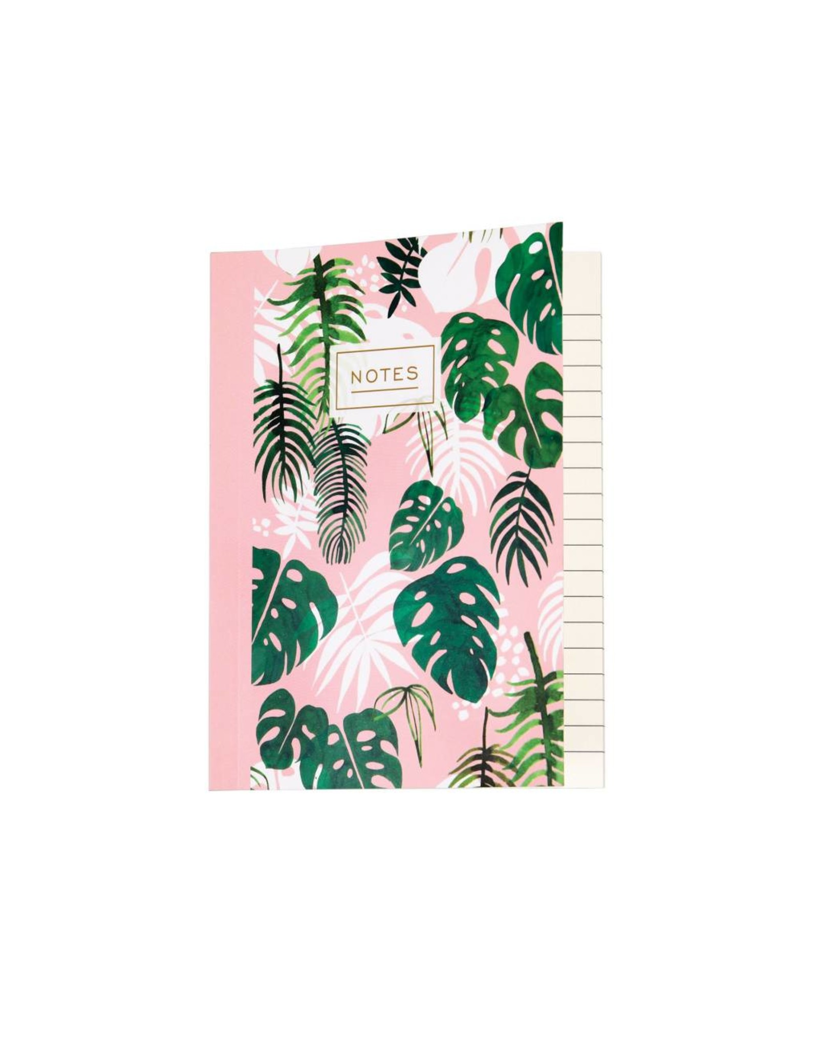 Schriftje tropical palm A6