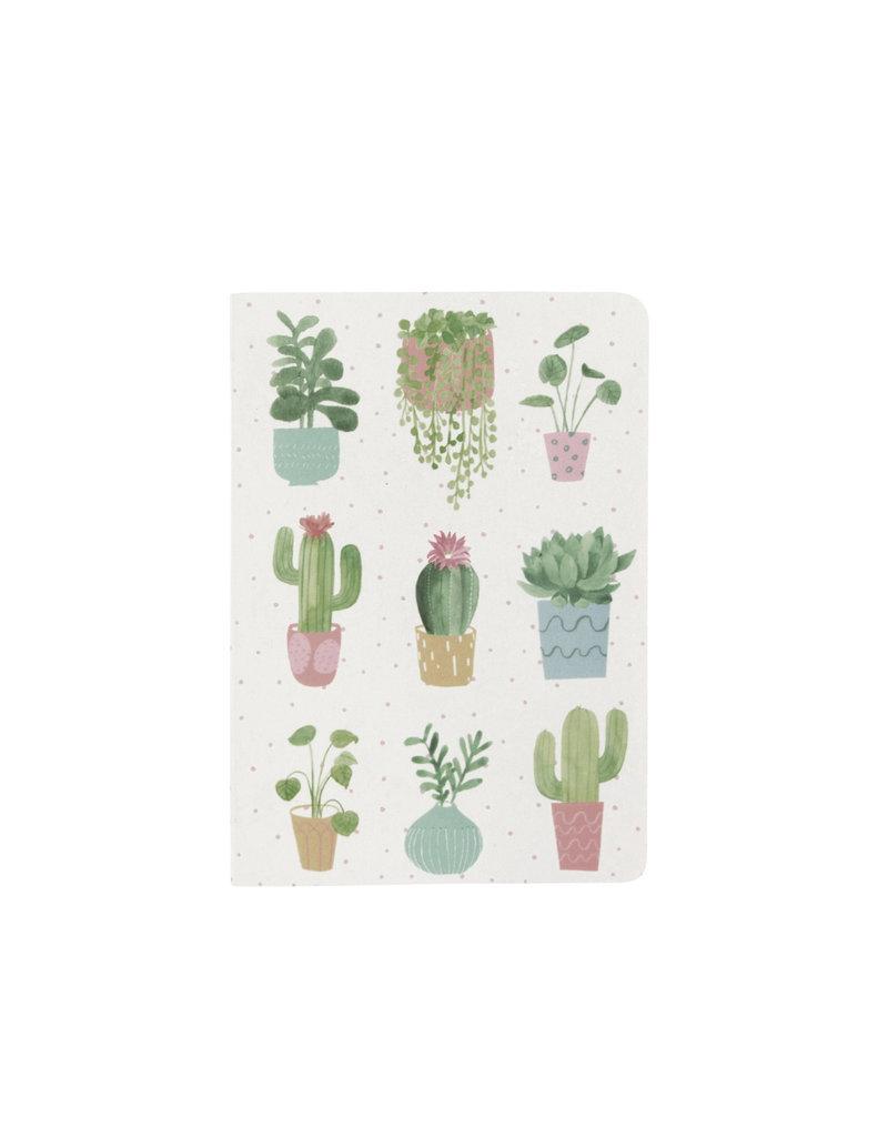 Schriftje A7 cactus blanco