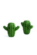 Droogballen cactus 2st.