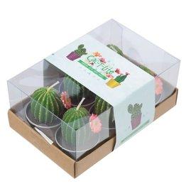 Theelichtjes cactus set v. 6
