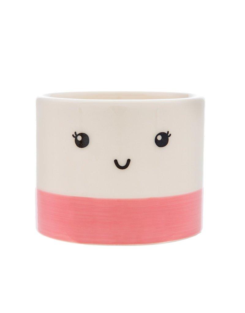 Bloempotje gezicht roze