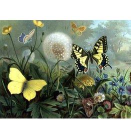 Diamond Painting vlinders 30x40cm