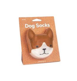 Sokken hond