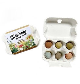 Bloembommetjes 6st. in mini eierdoosje