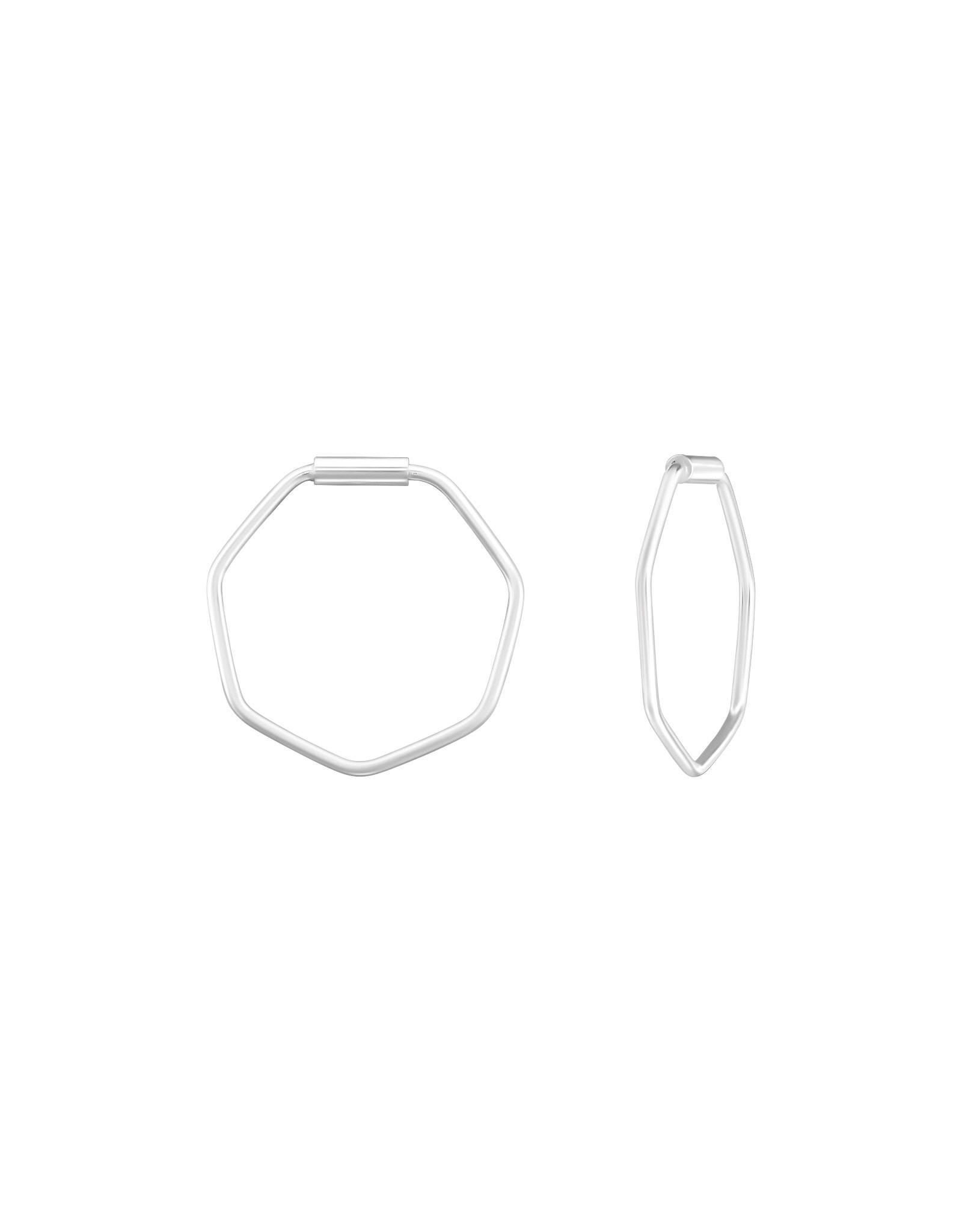 Hangers zilver zeshoek
