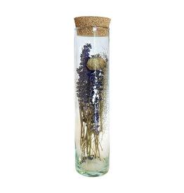 Droogbloemen cilinder breed papaver 30cm