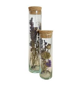 Droogbloemen cilinder breed papaver duo