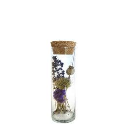 Droogbloemen cilinder breed papaver 20cm