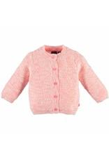 Babyface Roze vestje