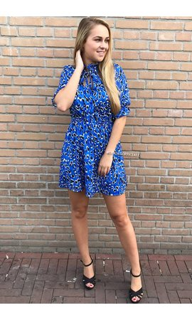 ROYAL BLUE - 'NAOMI' - LEOPARD SHORT SLEEVE DRESS