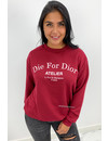 WINE RED - 'DIE FOR DIOR SWEATER' - SOFT TOUCH INSPIRED LONG SLEEVE SWEATER