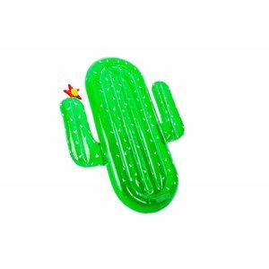 Didak Pool Luxe Cactus