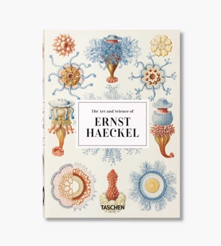 Taschen Taschen Ernst Haeckel