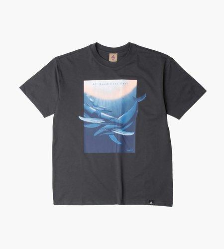 Nike Nike M NRG ACG T-Shirt Wyland Dk Smoke Grey