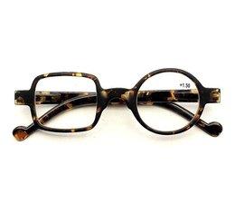 Gekke Leesbril model Pop-Art in havanna