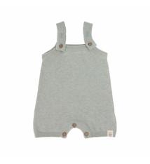 Lässig Lässig baby gebreide Jumpsuit GOTS Garden Explorer aqua grey 62-68, 2-6 mnd