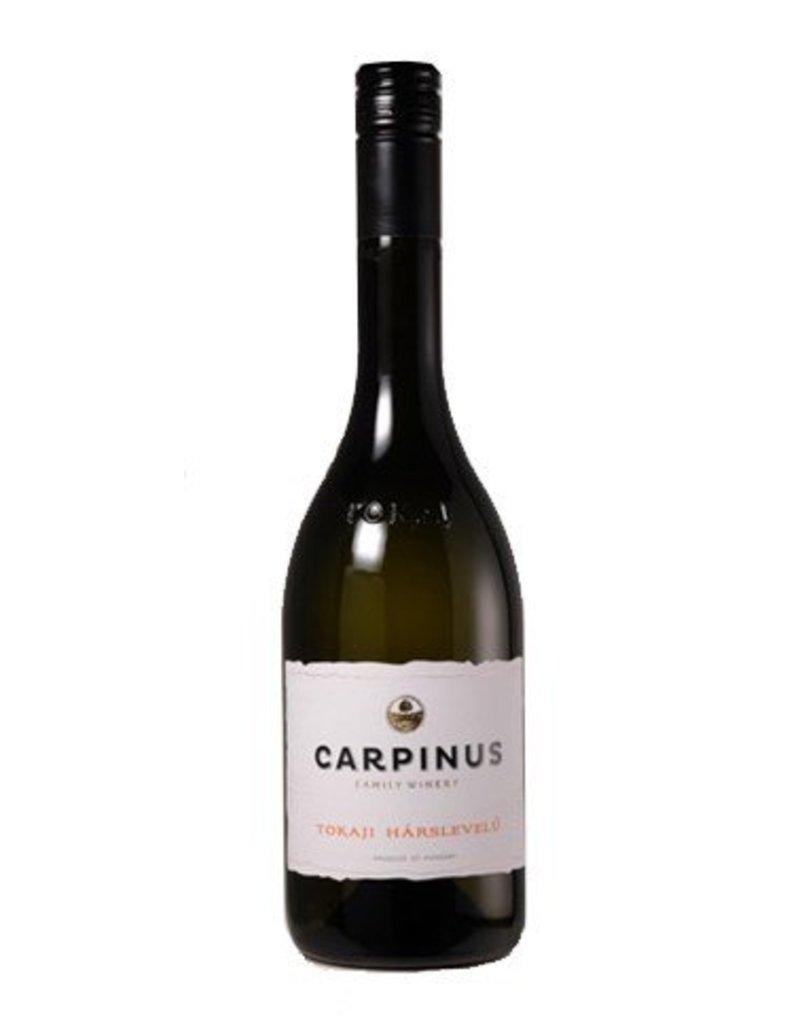 Carpinus - Tokaj Harsvelu
