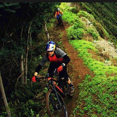 Mountainbikes met voorvering