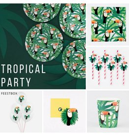 My Little Day Tropical Party Feestbox