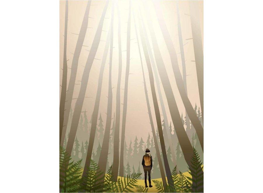 Vissevasse - Poster 'Into the woods'