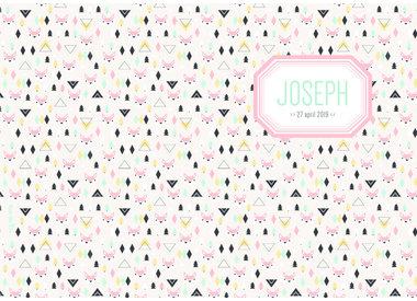Geboortelijst Joseph