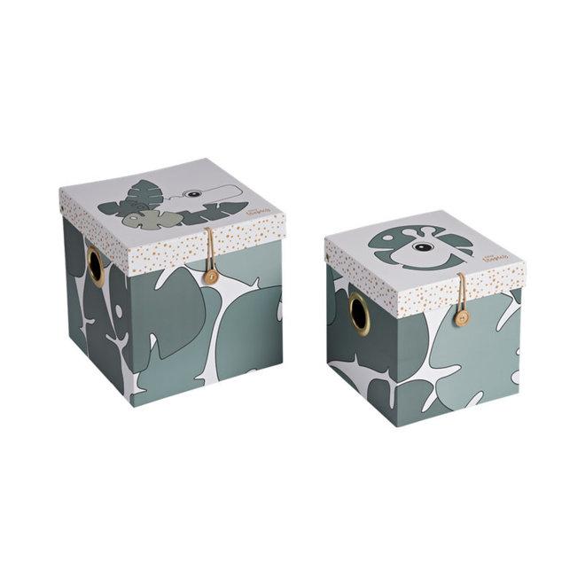 Done By Deer - Tiny Tropics Box Set Large