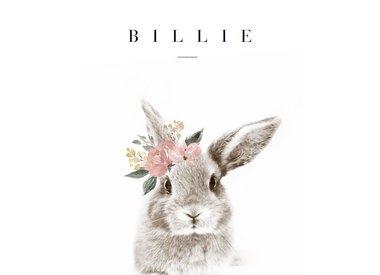 Geboortelijst Billie