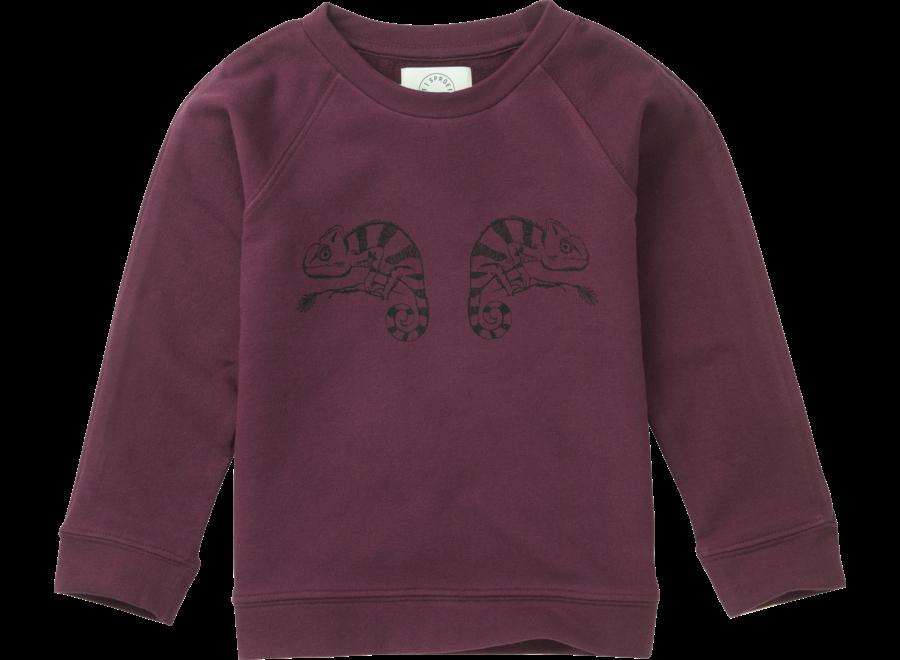 Sproet & Sproet - Sweatshirt Chameleon