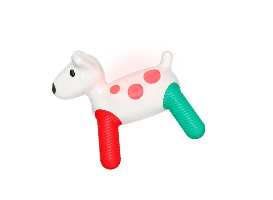 Kid O - Hudson Hond met licht