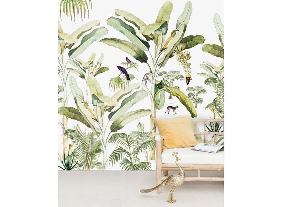 Wall paper -  Baby Bananas (mural)