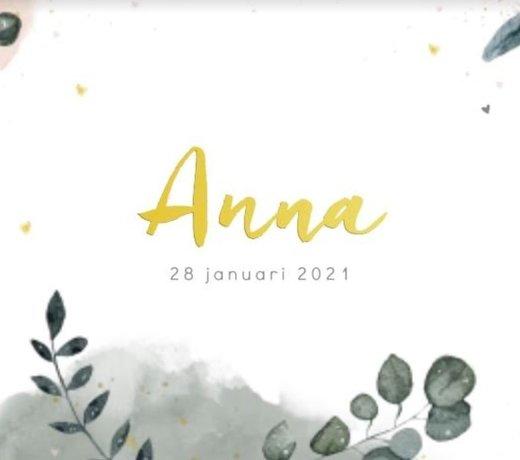 Geboortelijst Anna