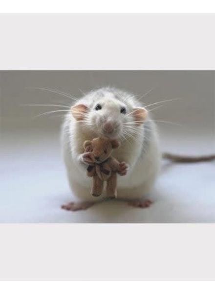 3D magneet rat