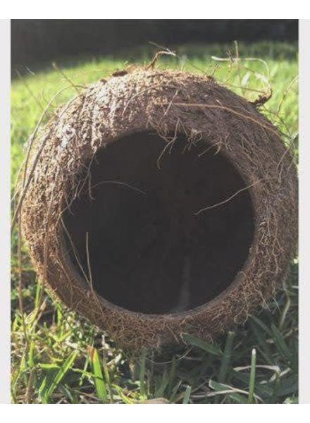 Kokosnoot huisje