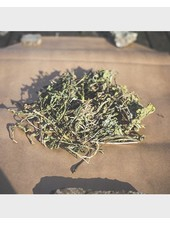 Dandelion leaves 2nd choice 1.5 - 15 kg