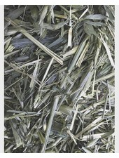 Green Oats 100 gr - 1kg