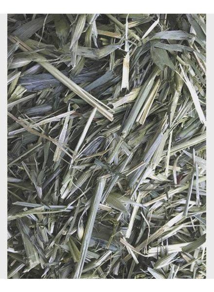 L'avoine 100gr - 1kg
