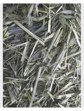 Green Oats 1.5 - 15 kg