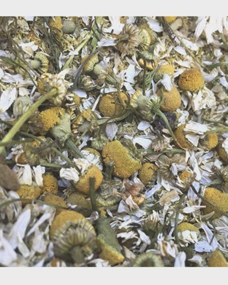 Camomile flowers - Matricaria recutita