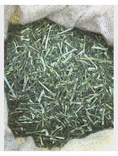 Dill 1.5 kg - 20 kg
